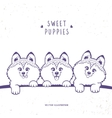 Three cute puppy vector image