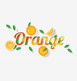word orange design in paper art style vector image
