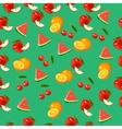 a watermelon vector image