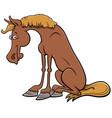 cartoon horse farm animal comic character vector image vector image