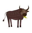cute bull buffolo animal trend cartoon style vector image vector image