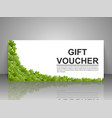 Gift voucher template with green leaves on a white vector image vector image