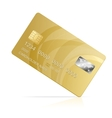 gold Credit Card isolated vector image vector image