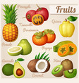 set cartoon food icons exotic fruits vector image