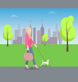 woman walking with pat in park colorful poster vector image