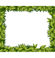 Border made of leaves vector image