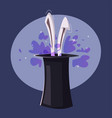 magic trick rabbit in a hat vector image