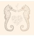 seahorse in love vector image vector image
