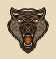 wolf head colored vintage vector image
