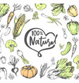 100 percent natural meal veggies vegetables set vector image