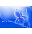abstract iris flower on a blue background vector image