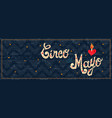 cinco de mayo mexican party web banner quote vector image vector image