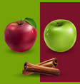 cinnamon green and red apples vector image vector image