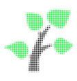 flora plant halftone icon vector image vector image