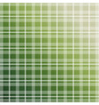 olive green plaid pattern vector image
