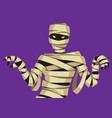 scary mummy figure vector image vector image