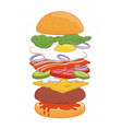 tasty hamburger with layers or ingredients vector image