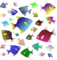 tropical fish collection isolated on white vector image