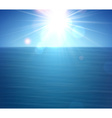 Tropical sunny summer sea vector image vector image