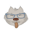 zen tangle cat in glasses vector image