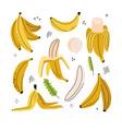 banana banana slice peeled banana banana peel vector image