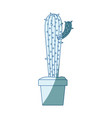 blue shading silhouette with cactus with small vector image vector image
