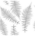 fern leaf fern leaf seamless pattern background vector image vector image
