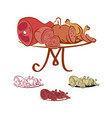 meat products on the table vector image