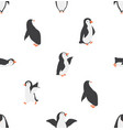 seamless penguins characters pattern vector image vector image