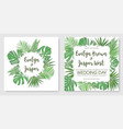 set tropical frame wedding invitation label vector image vector image