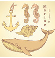 Sketch sea creatures in vintage style vector image vector image