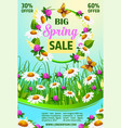 spring holiday sale poster of flowers vector image vector image