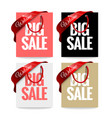 big winter sale label vector image vector image