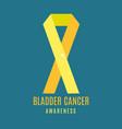 bladder cancer awareness ribbon with a pin vector image vector image