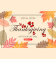 calligraphy thanksgiving day sale banner vector image vector image