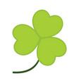 common clover leaves graphic vector image vector image