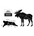 cut of elk set poster butcher diagram - desert vector image