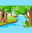 nature scene with river in the forest vector image vector image