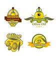 olive oil emblem set for bottle label design vector image