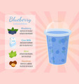 smoothie recipe - blueberry cartoon flat style vector image vector image