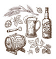 hand drawn beer mug barrel wheat and malts ears vector image vector image