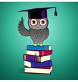 Owl sitting on books vector image vector image