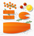 set of fresh raw salmon fish and spices vector image