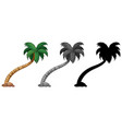 set of palm tree vector image vector image