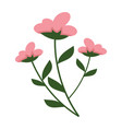 simple flowery plant graphic vector image vector image