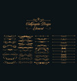 calligraphic design elements set vector image vector image