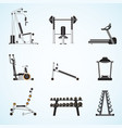 fitness gym equipment vector image vector image