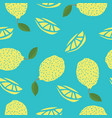 food collection lemons hand drawn seamless pattern vector image vector image