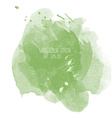 Green watercolor stain on white background vector image vector image