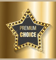 premium choice star shape award best product vector image vector image